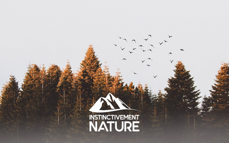Instinctivement Nature